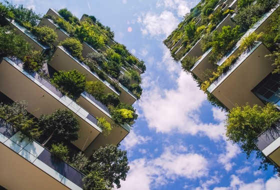 Green Building Certification Services