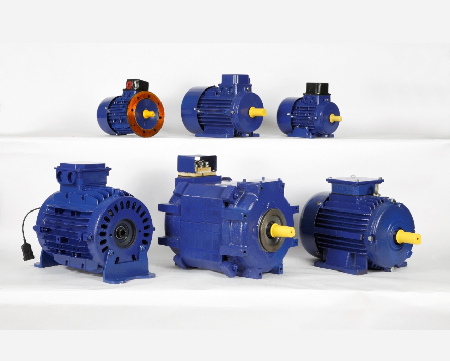 Three Phase Induction Motors (LT Motors)