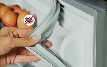 Anti-Bacterial Removal Gasket