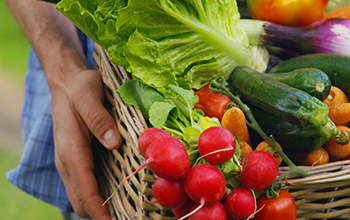 Farm Freshness upto 24 days