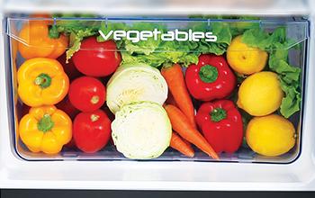 Largest Vegetable Storage