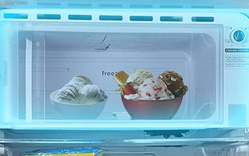 Largest Freezer